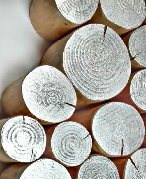 Decorative Metallic Logs - SILVER LUSTRE